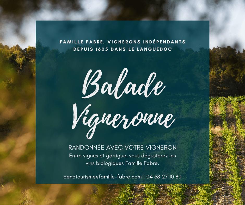 Balade Vigneronne Famille Fabre